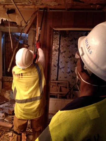 Laurence pulling down some paneling. Note the lovely butterfly motif.