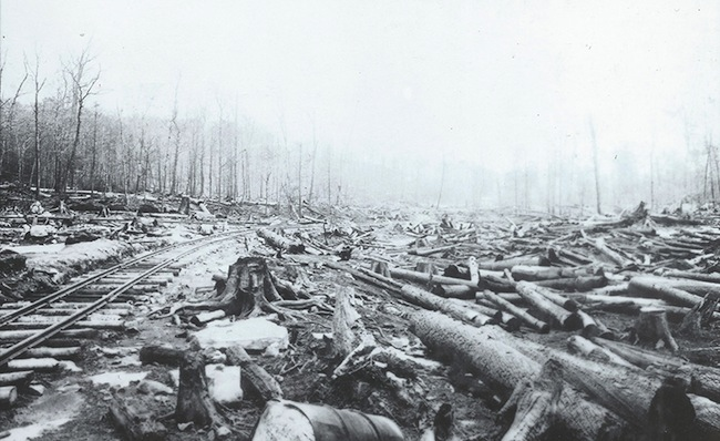 (Image courtesy of http://lumbermuseum.org/historic-pa-logging-photos/)