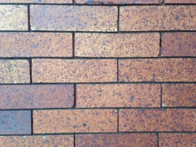 Classic ironspot bricks from a 1920s rowhouse, no doubt shipped from Western PA or Ohio